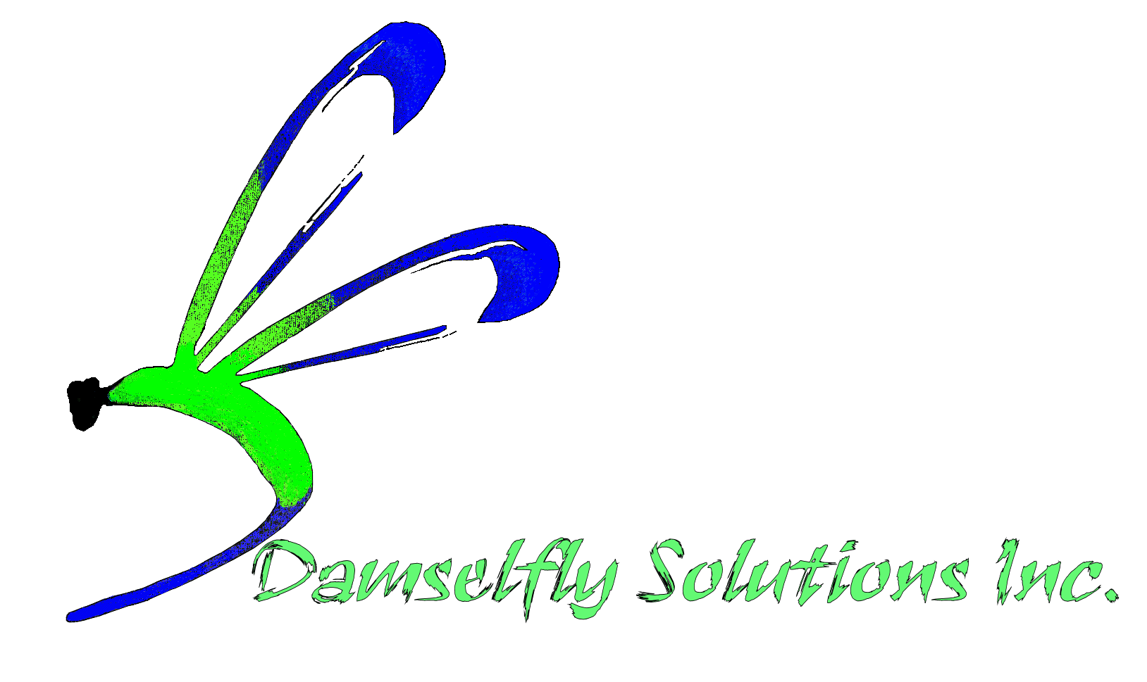 Damselfly Solutions Inc